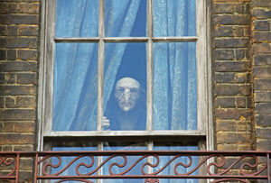 Stworek wyglądający przez okno