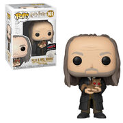Filch and Mrs Norris POP