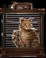 Ginger-cat-lrg.png