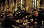 Rupert and chris columbus