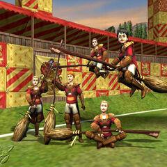 Команда в игре «Квиддич с древности до наших дней»