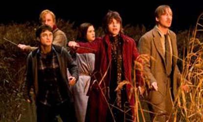 Harry Potter Fat Ladys Dress