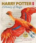 Книга выставки Гарри Поттер История Магии Блумсберри Обложка 2017