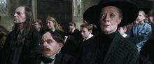 Flitwick mourning Cedric