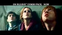 Harry Potter and the Deathly Hallows, Part 2 -- Franchise Trailer