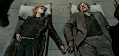 Remus Lupin & Nymphadora Tonks Deceased