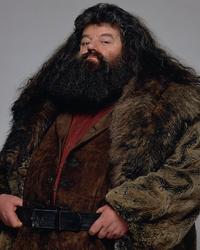 Rubeus Hagrid promo