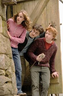 Гермиона, Гарри и Рон в ГП-3