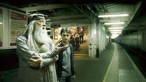 Dumbledore i Harry -1
