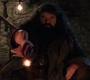 Różdżka Rubeusa Hagrida