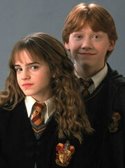 The-trio-Harry-Potter-and-the-chamber-of-secrets-potterhead