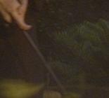 Theseus wand