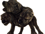 Three-headed dog
