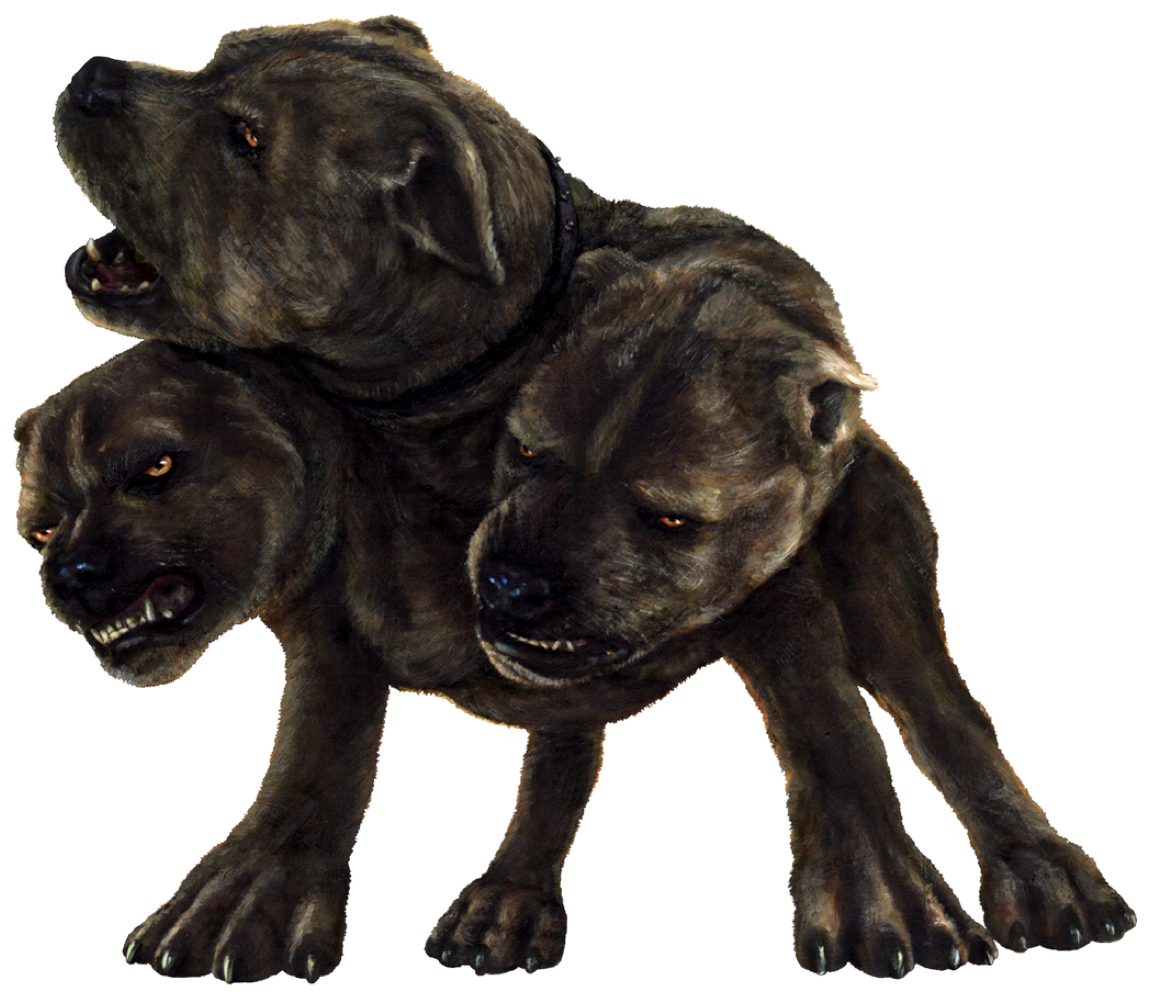 Image result for three headed dog