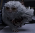 Demiguise-FB.png