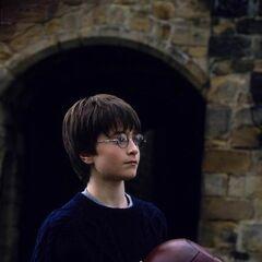 Гарри с квоффлом