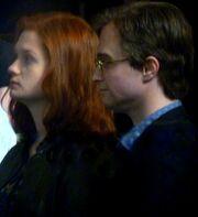 Harry + Ginny - älter