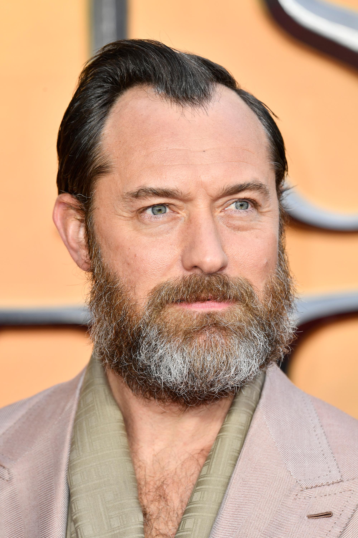 Jude Law Harry Potter Wiki Fandom