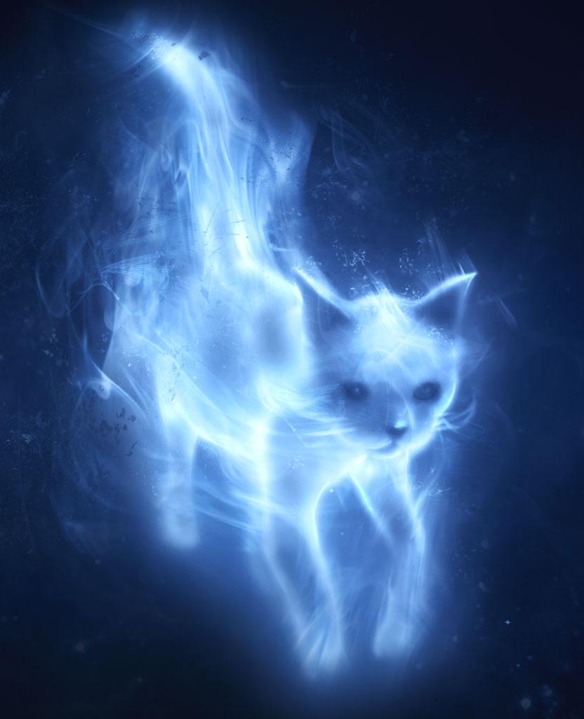 Patronus Charm Harry Potter Wiki