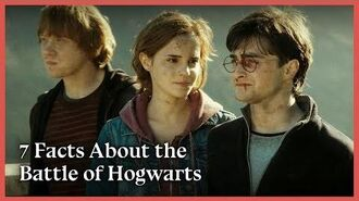 Facts about The Battle of Hogwarts Wizarding World
