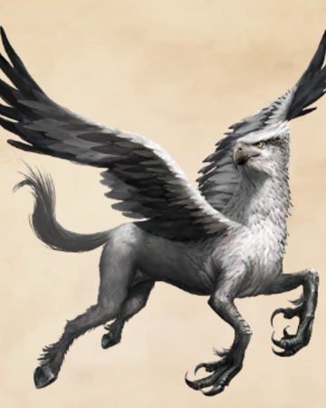 Hippogriff | Harry Potter Wiki | Fandom