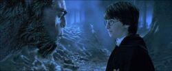 Firenze talking to Harry