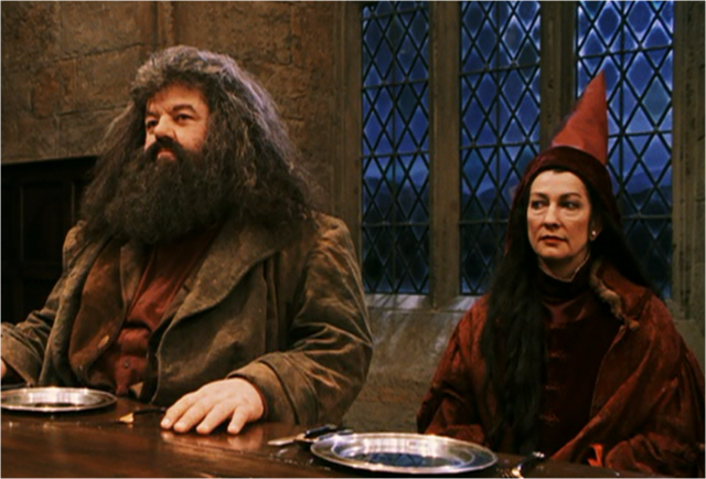 File:Hagrid and Vector.png
