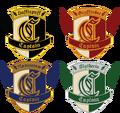 Captain badges.png