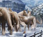 Абраксанские кони