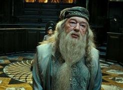 Dumbledore przesłuchanie 2