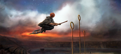Ron Flying Firebolt