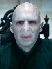 Voldemort Headshot DHP1