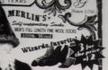 Merlin'sSelf-SupportingSocks.png