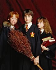 Trio in their younger days Harry, Ron and Hermione