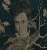 Bellatrix Black (arbre généalogique)