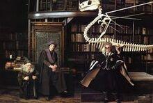 Sorcerers-stone professors