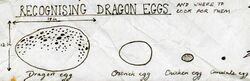 Размеры драконьего яйца в сравнении