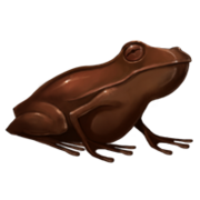 Chocogrenouille pottermore