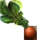 Dirigible plum (pottermore)