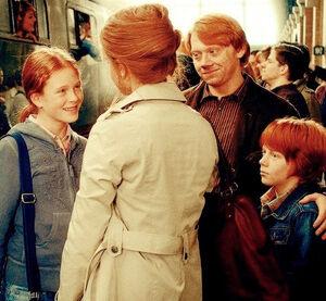 Família Weasley Nova Generació