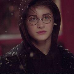 Гарри в Хогсмиде