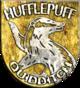 Hufflepuff™ Quidditch™ Badge
