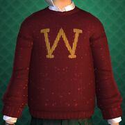 Bill's clothing item