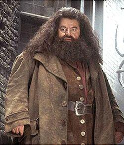 Hagrid1