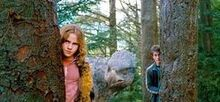 Harry potter and the prisoner of azkaban hermonine granger and harry potter sneak hippogriff buckbeak through forest