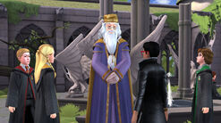 HM - Hagrid Birthday Planning