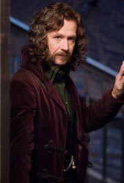 Sirius Grimmauld