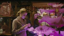 Hermione e Gina na Gemialidades Weasley