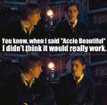 Accio-Beautiful-harry-potter-vs-twilight-18451801-500-487.jpg