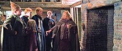 Weasleys burrow